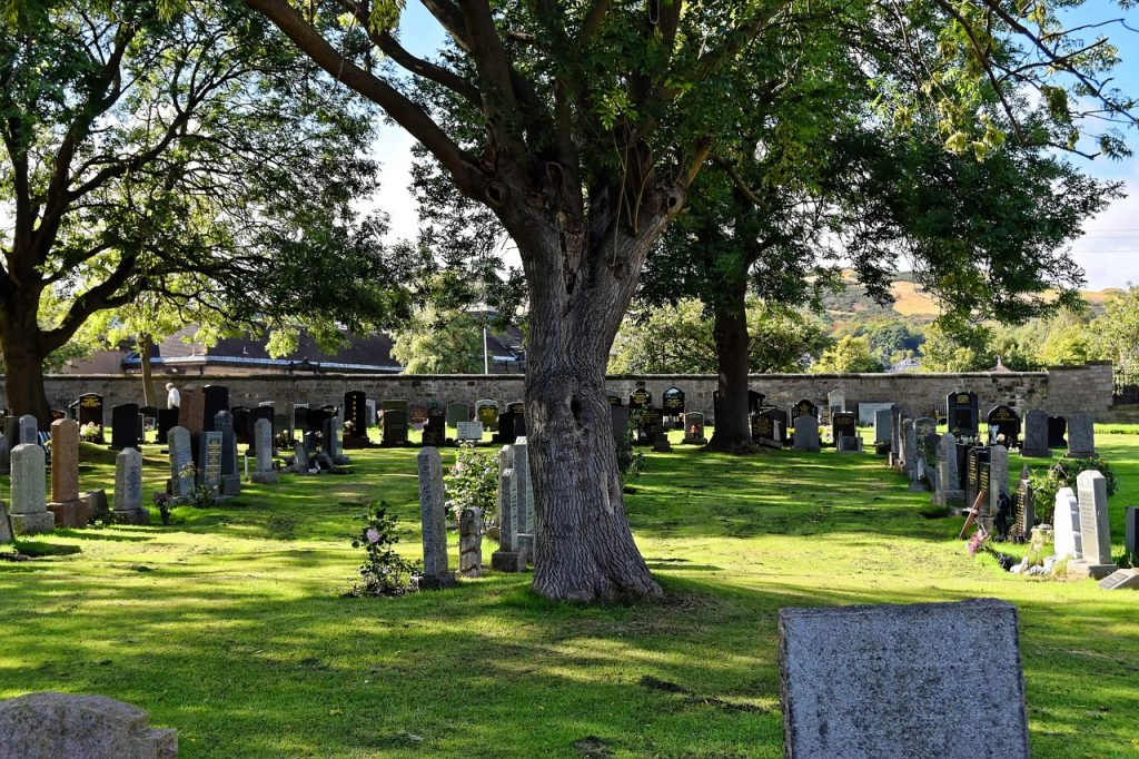 usługi pogrzebowe powązki
