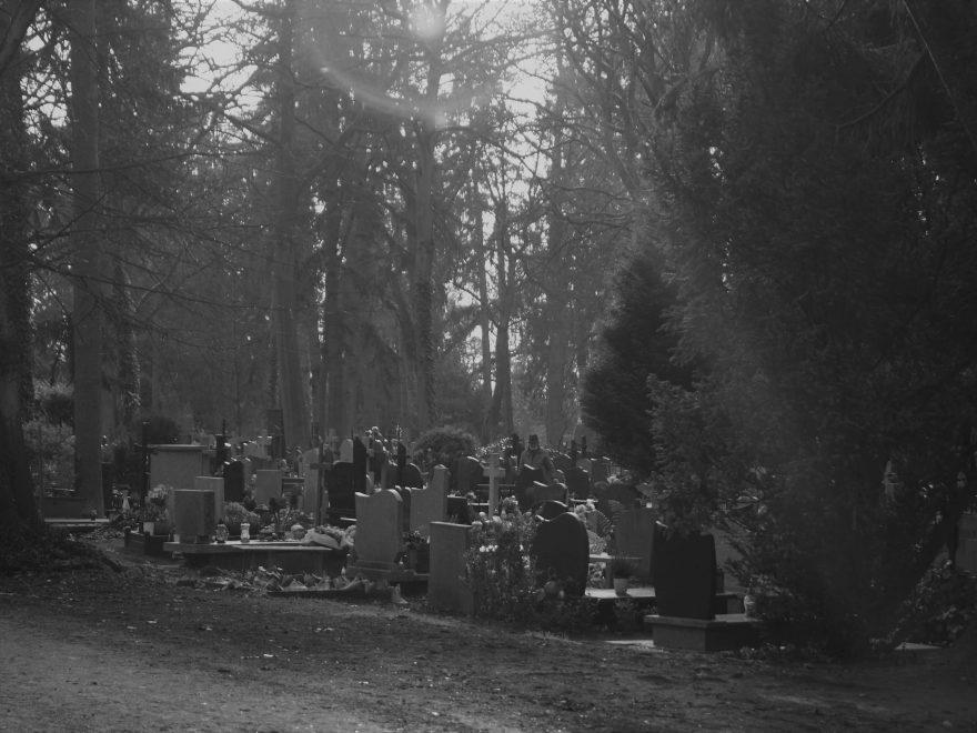 cmentarz, opieka nad grobami